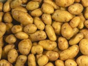 Картофель для компресса
