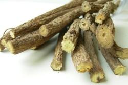 Корень солодки для лечения мокроты в бронхах