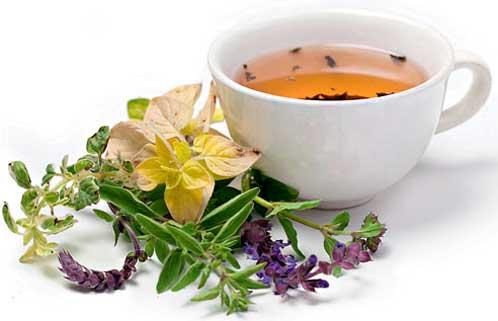чай из трав при мочекаменной болезни
