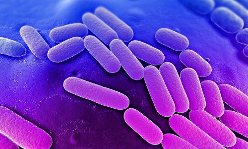 Молочница и цистит одновременно могут возникнуть, если имеются факторы, которые вызывают активизацию патогенных бактерий