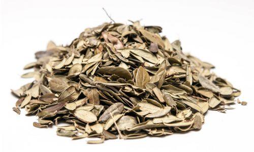 Фиточай из листьев брусники называют самым эффективным из всех средств народной медицины от цистита