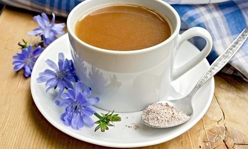 Цикорий похож на кофе по своему вкусу, но и обладает большим набором целебных свойств