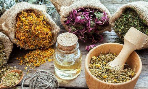 Для получения максимального эффекта от терапии цистита рекомендуется комбинировать прием лекарственных препаратов со средствами растительного происхождения