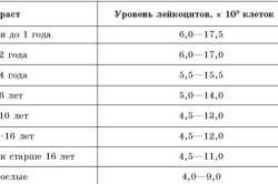 Нормальные значения главных показателей при анализе крови на лейкемию