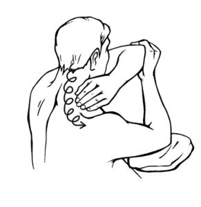 Поглаживание шеи