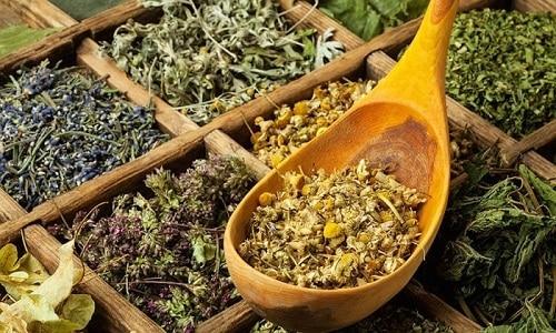 Чай оказывает диуретическое воздействие, не вызывая при этом побочных реакций организма