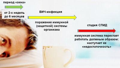Этапы развития вич