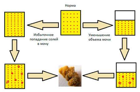 повышение концентрации солей