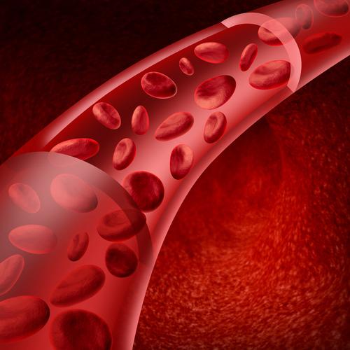 попадания микобактерий через кровь