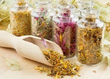Полезные травы при панкреатите