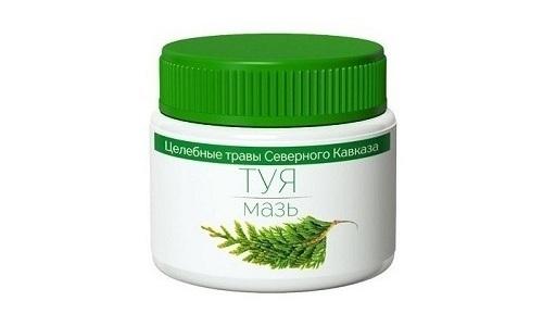 В состав мази Туя входят натуральные эфирные масла, благодаря чему оказывается антисептическое действие